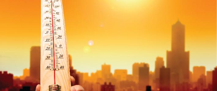 health hazards in summer