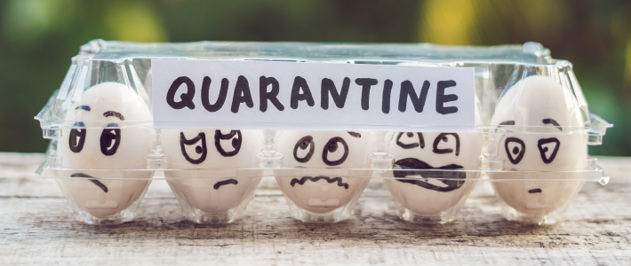 Quarantine, isolation and social distancing
